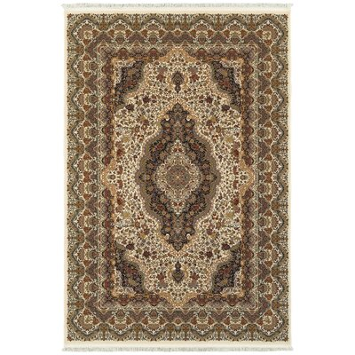 Knepp Sophisticated Medallion Ivory/Brown Area Rug Rug Size: Rectangle 53 x 76