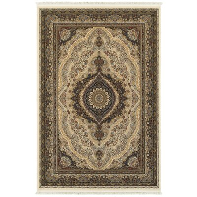 Knepp Opulent Medallion Ivory/Black Area Rug Rug Size: Rectangle 53 x 76