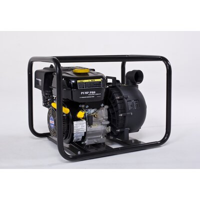 PumpPro 6.5 HP Chemical Pump