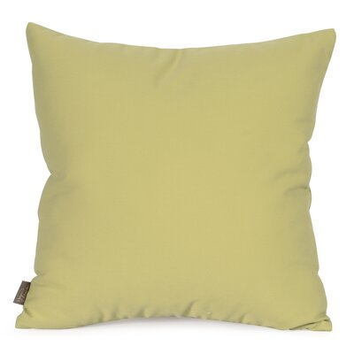 Starboard Indoor/Outdoor Throw Pillow Size: 20 x 20, Color: Willow