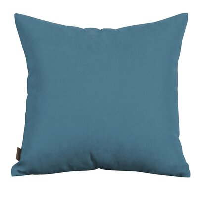Throw Pillow Color: Silver Fox, Size: 20 x 20