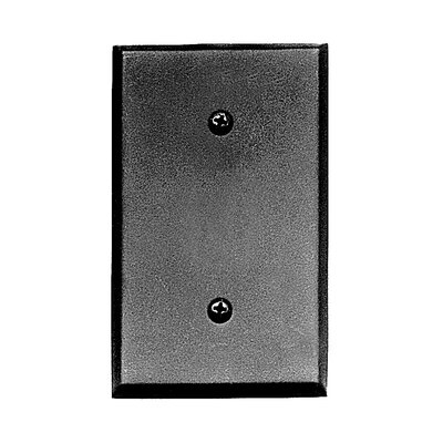 Blank Switch Plate