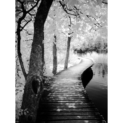 'Take a Walk' Framed Photographic Print on Wrapped Canvas