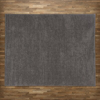 Sondra Gray Area Rug Rug Size: Rectangle 82 x 10