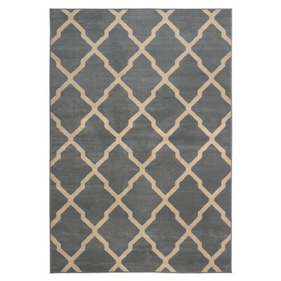 Rosella Area Rug in Gray Rug Size: Rectangle 67 x 96
