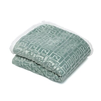 Ronda Textured Sherpa Throw Blanket Color: Green