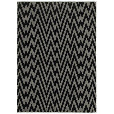 Ayden Gray/Black Area Rug Rug Size: 37 x 56
