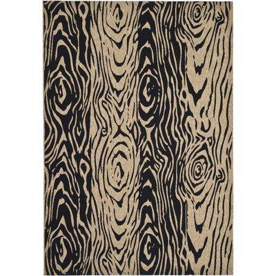 Coffee/Black Area Rug Rug Size: 53 x 77