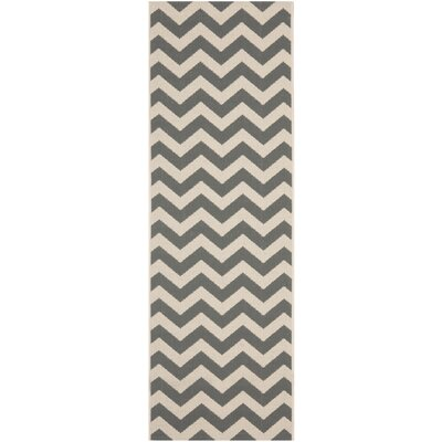 Mullen Indoor/Outdoor Area Rug Rug Size: Runner 23 x 12