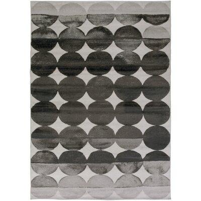 Hudson Charcoal/Light Gray Area Rug Rug Size: 39 x 52