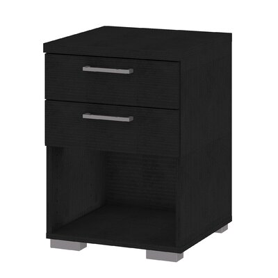 Shelby 2 Drawer Nightstand Color: Black
