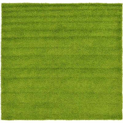 Madison Basic Apple Green Area Rug Rug Size: Square 82, Color: Color