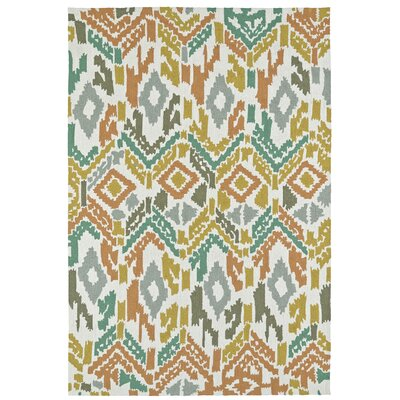 Michele Handmade Indoor / Outdoor Area Rug Rug Size: Rectangle 4 x 6