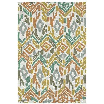 Michele Handmade Indoor / Outdoor Area Rug Rug Size: Rectangle 8 x 10