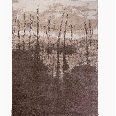 Greta Taupe Area Rug Rug Size: 28 x 48