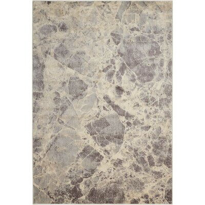 Kirsten Gray Area Rug Rug Size: 36 x 56