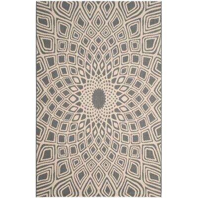 Estella Anthracite/Beige Indoor/Outdoor Area Rug Rug Size: 67 x 96