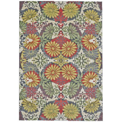 Lloyd Citron Area Rug Rug Size: Rectangle 8 x 11