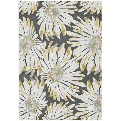 Alexys Gris Area Rug Rug Size: Rectangle 22 x 4