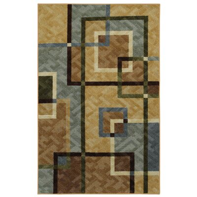 Samella Overlapping Squares Area Rug Rug Size: 3 x 4