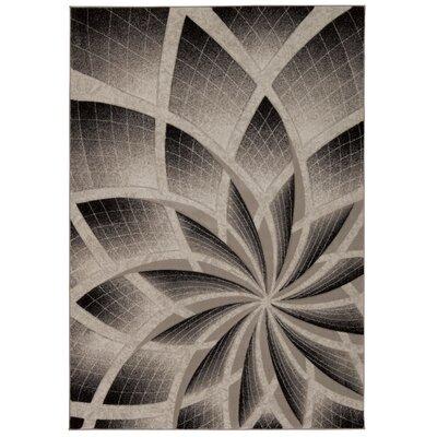 Wendolyn Gray Rug Rug Size: 53 x 74