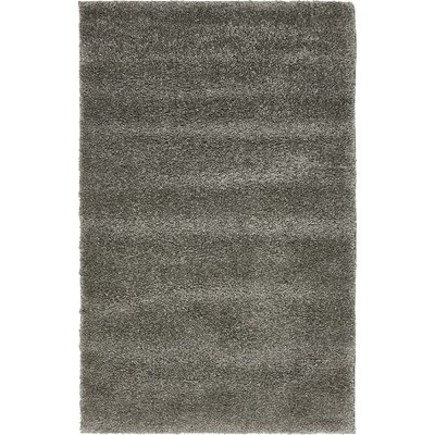 Sydnee Gray Area Rug Rug Size: Rectangle 33 x 53