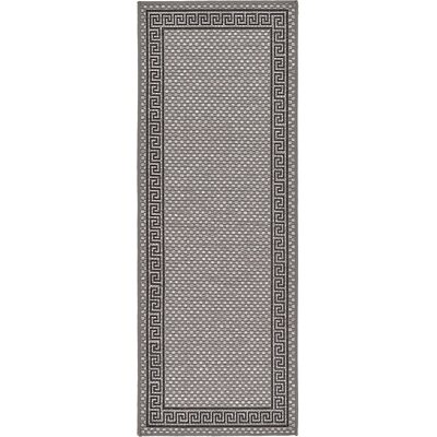 Kimble Gray Outdoor Area Rug Rug Size: Runner 22 x 6