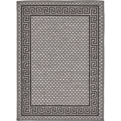 Kimble Gray Outdoor Area Rug Rug Size: Rectangle 22 x 3
