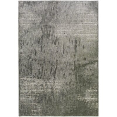 Detweiler Gray Area Rug Rug Size: Rectangle 710 x 910