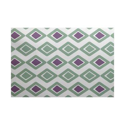 Elaine Green/Purple Indoor/Outdoor Area Rug Rug Size: 4 x 6