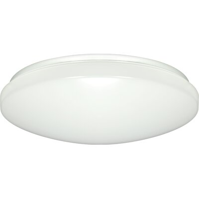 Brian 1-Light Flush Mount