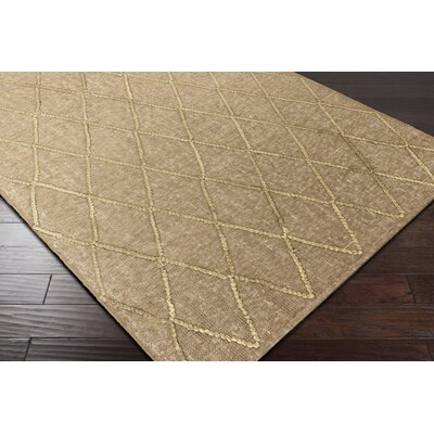 Rachelle Hand-Woven Brown Area Rug Rug Size: Rectangle 4 x 6