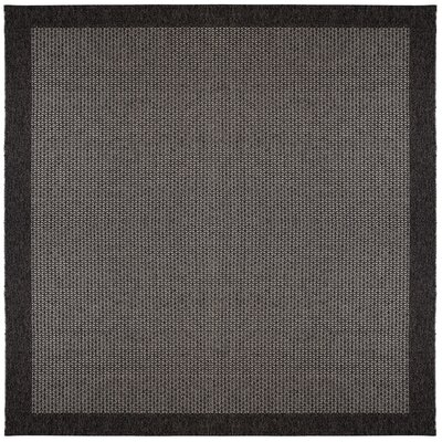 Felipe Black Indoor/Outdoor Area Rug Rug size: Square 76