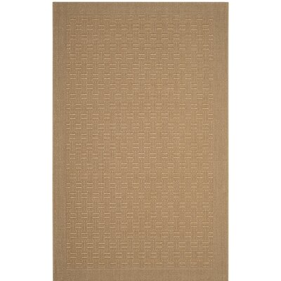 Jenny Brown Area Rug Rug Size: Rectangle 3 x 5