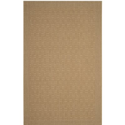 Jenny Brown Area Rug Rug Size: Rectangle 8 x 10