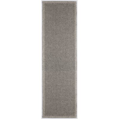 Felipe Charcoal Indoor/Outdoor Area Rug Rug size: Runner 26 x 11