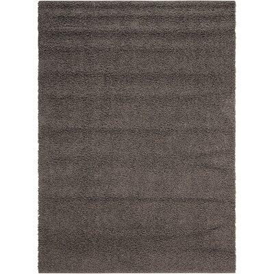 Sondra Gray Area Rug Rug Size: 82 x 10