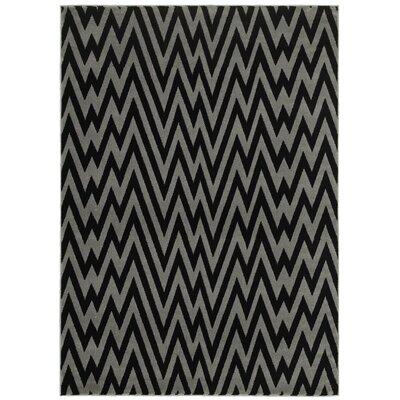 Ayden Gray/Black Area Rug Rug Size: Runner 21 x 75