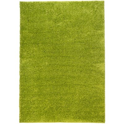 Reynolds Plain Solid Green Area Rug Rug Size: 33 x 53