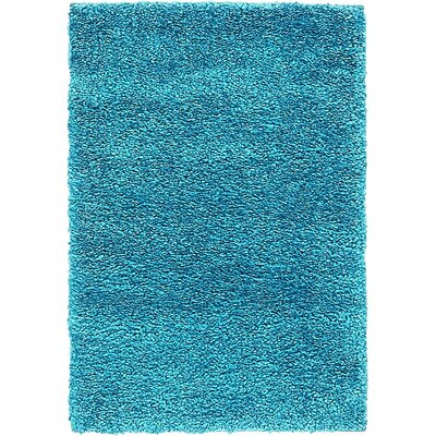 Truett Turquoise Area Rug Rug Size: Rectangle 2'2