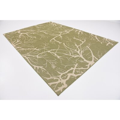 Tameka Green Outdoor Area Rug Rug Size: 8 x 114