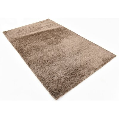 Virgie Solid Shag Brown Area Rug Rug Size: 5 x 8