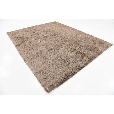 Virgie Solid Shag Brown Area Rug Rug Size: 8 x 10