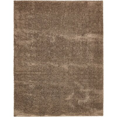 Virgie Solid Shag Brown Area Rug Rug Size: Rectangle 8 x 10