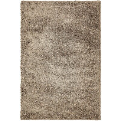 Virgie Solid Shag Brown Area Rug Rug Size: 4 x 6