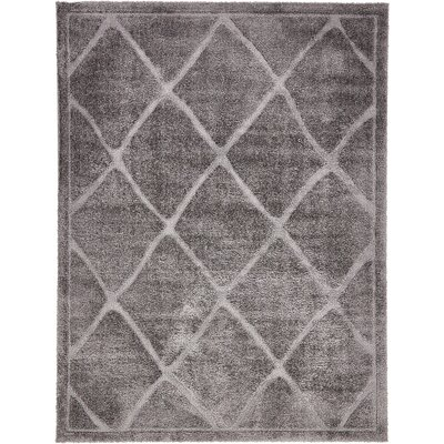Chester Dark Gray Area Rug Rug Size: 4 x 6