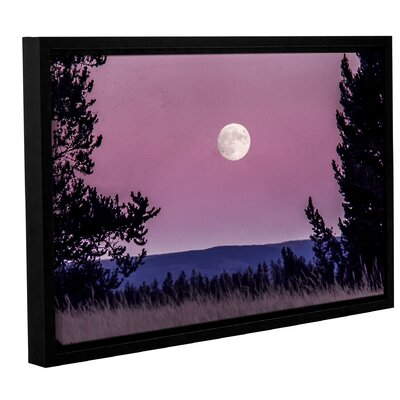 'Pink Moon 01' Framed Photographic Print Size: 12
