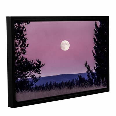 'Pink Moon 01' Framed Photographic Print Size: 8