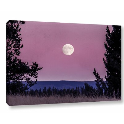 'Pink Moon 01' Photographic Print on Wrapped Canvas Size: 12
