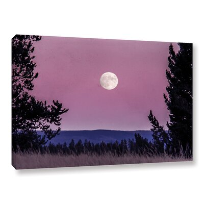 'Pink Moon 01' Photographic Print on Wrapped Canvas Size: 8